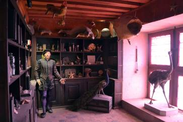 Cabinet de curiosités, oeuvre de Guillaume Bijl, château d'Oiron CMN