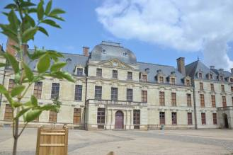 Ville de Thouars - château